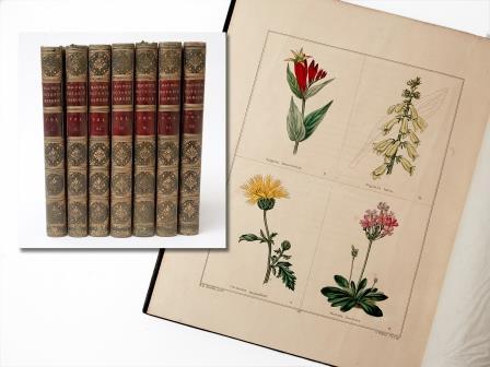 Books – The Botanic Garden