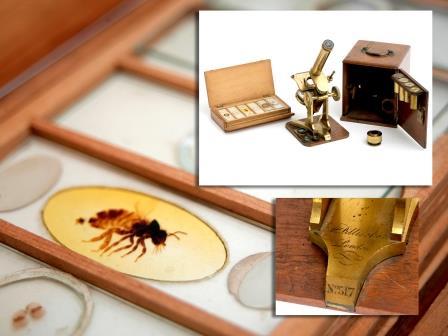 Brass Microscope